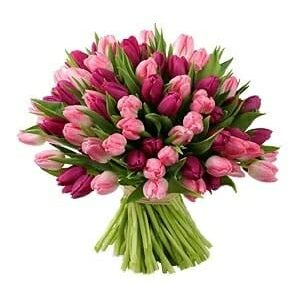 buchet cu lalele mov si roz