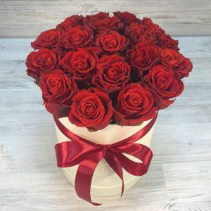 Trandafiri C107