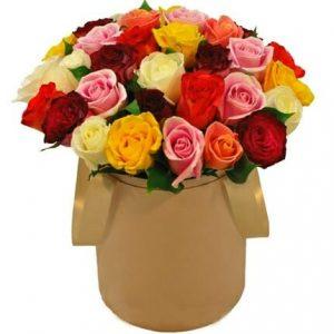 Trandafiri C110