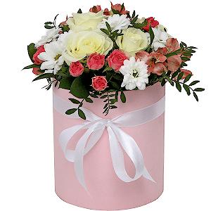 Trandafiri C124
