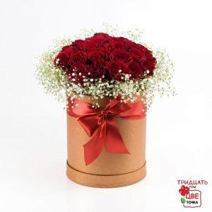 Trandafiri C143